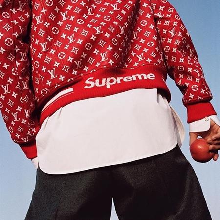 Louis Vuitton(ルイ・ヴィトン) Supreme(シュプリーム)コラボ ブルゾン